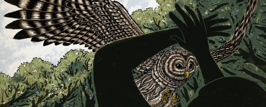 The Mysterious Case of the Pacific Northwest's Vengeful Owls – Outside Online